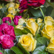 Bright bouquet of roses of various grades — Stock Photo #60527131