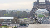 Paris, France, on March 27, 2011. A city landscape with the Eiffel Tower. — Stock Photo
