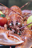 Fresh lobster on a counter of the market in the Mediterranean city — Stock Photo