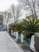 Istanbul, Turkey. April 28, 2011. Typical city landscape. Exotic plants on the street — Stockfoto