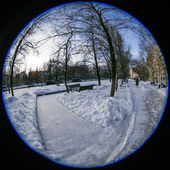 Pushkino, Russia, on January 26, 2015. Winter city landscape of by fisheye view. Boulevard and bench under snow — Stock Photo