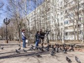 Pushkino, Russia, on April 11, 2015. People feed pigeons in the boulevard in the sunny spring afternoon — Stok fotoğraf