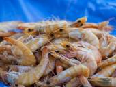 Fresh seafood on a counter of the fish market — Stock Photo