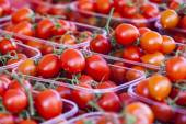 Ripe red tomatoes on a market counter — Foto de Stock
