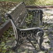 PUSHKINO, RUSSIA - on OCTOBER 15, 2013. A beautiful bench in the boulevard. Autumn look. — Stock Photo #74247401