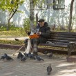 PUSHKINO, RUSSIA - on OCTOBER 15, 2013. The elderly person feeds birds in the boulevard. — Stock Photo #74247453