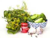 Greens, spicy herbs and garlic for salting of cucumbers — Stock Photo