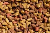 Pet food — Stock Photo