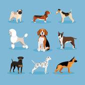 Honden set — Stockvector