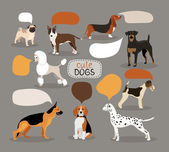 Set of dog breeds with speech bubbles — Stock Vector