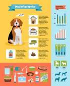 Dog infographics — Stock Vector
