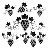 Winery design elements set — Stock Vector