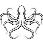 Vector octopus illustration — Stock Vector #60958935