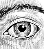 Engraving human eye — Stok Vektör