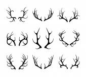 Vector deer antlers isolated on white — Stock Vector