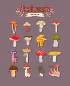 Vector mushrooms set — Stock Vector