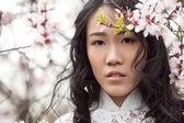 Almond blossoms - Portrait Vietnamese girl in Ao Dai — Stock Photo