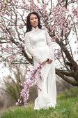 Almond blossoms - Vietnamese girl in Ao Dai — Stock Photo