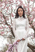Vietnamese girl in a white Ao Dai — Stock Photo