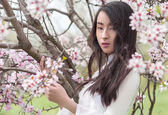 Almond blossoms - Serenity Portrait Vietnamese girl in White Ao — Stock Photo