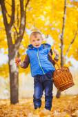 Happy boy in the autumn park — Stock Photo