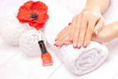 French manicure with red poppy flower — Stock Photo