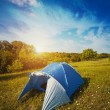 Tourist tent in forest camp among meadow — Stock Photo #76047985