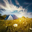 Tourist tent in forest camp among meadow — Stock Photo #76048233