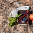Notebook, compass, apple, rope on stone background — Stock Photo #53459983