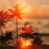 島やヤシの木と海の夕日 — ストックベクタ