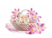 Delikat maräng i en skål med blommande krokusar — Stockfoto