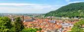 Panoramisch uitzicht op de Heidelberg — Stockfoto