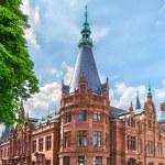 Facade of the historical main building of Heidelberg University — Stock Photo #77851292