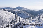 Winter landscape in the hills — Stockfoto