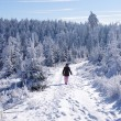 Winter landscape with woman — Stock Photo #53797911