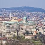 Royal palace in Budapest, Hungary — Stock Photo #73545079