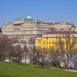 Royal palace in Budapest, Hungary — Stock Photo #74088419