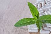 Capsules and a sprig of mint — Stock Photo