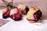 Dried rosebuds on the table — Stock Photo