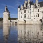 Castle of Chenonceaux, Indre-et-Loire, Centre, France — Stock Photo #57073611