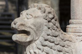 Lion in the city of Bergamo, Lombardy, Italy — Stock Photo