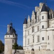 Castle of Chenonceaux, Indre-et-Loire, Centre, France — Stock Photo #57087015
