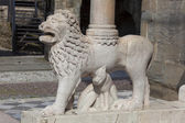 Lion in the city of Bergamo, Lombardy, Italy — Foto Stock
