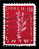 Emblem of the Haganah. — Stock Photo