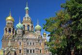 Kerk van de verlosser op het bloed spilled, st. petersburg — Stockfoto