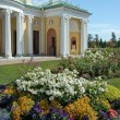 Cold Bath with Agate Rooms in Tsarskoye Selo (Pushkin), Saint-Petersburg — Stock Photo #58785341