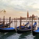 Venetian gondolas moored — Stock Photo #62195847