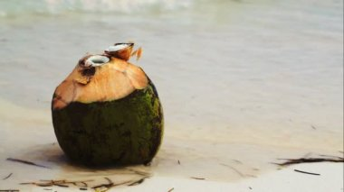 Coconut by the sea with female hand putting a straw there — Stok video