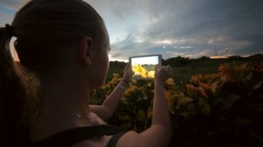 Woman using tablet PC to take photos of nature scenes — Stock Video