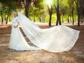 Beautiful bride — Foto de Stock